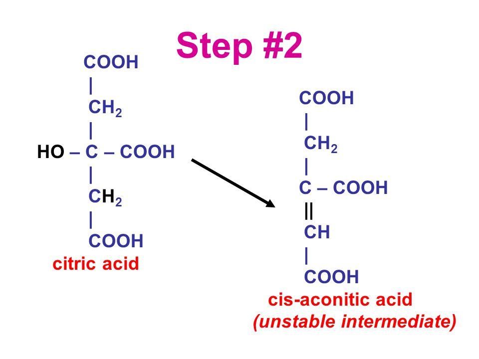 Step #2 COOH | CH 2 | HO – C – COOH | CH 2 | COOH citric acid COOH | CH 2 | C – COOH || CH | COOH cis-aconitic acid (unstable intermediate)