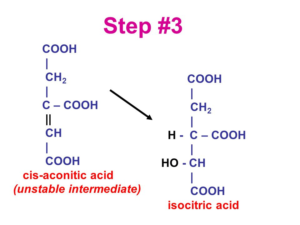 COOH | CH 2 | C – COOH || CH | COOH cis-aconitic acid (unstable intermediate) Step #3 COOH | CH 2 | H - C – COOH | HO - CH | COOH isocitric acid