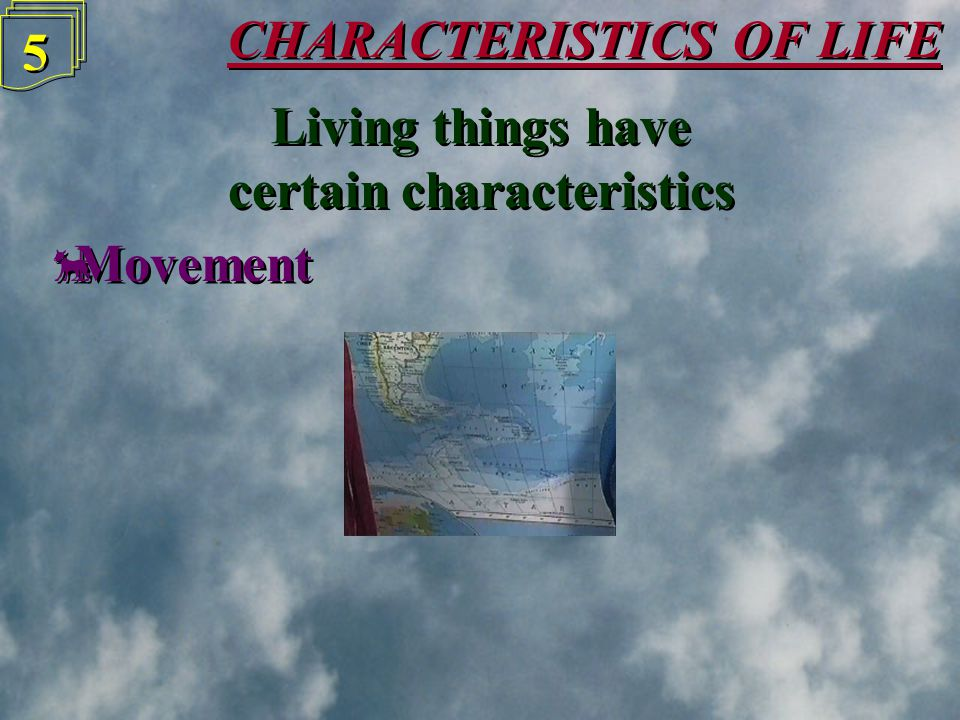 CHARACTERISTICS OF LIFE 4 4 Things may be one of these Non-livingThingsNon-livingThings LivingThingsLivingThings DeadThingsDeadThings Biology is the s