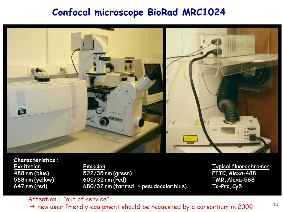 """10 Confocal microscope BioRad MRC1024 Attention ! """"out of service""""  new user friendly equipment should be requested by a consortium in 2009 Character"""