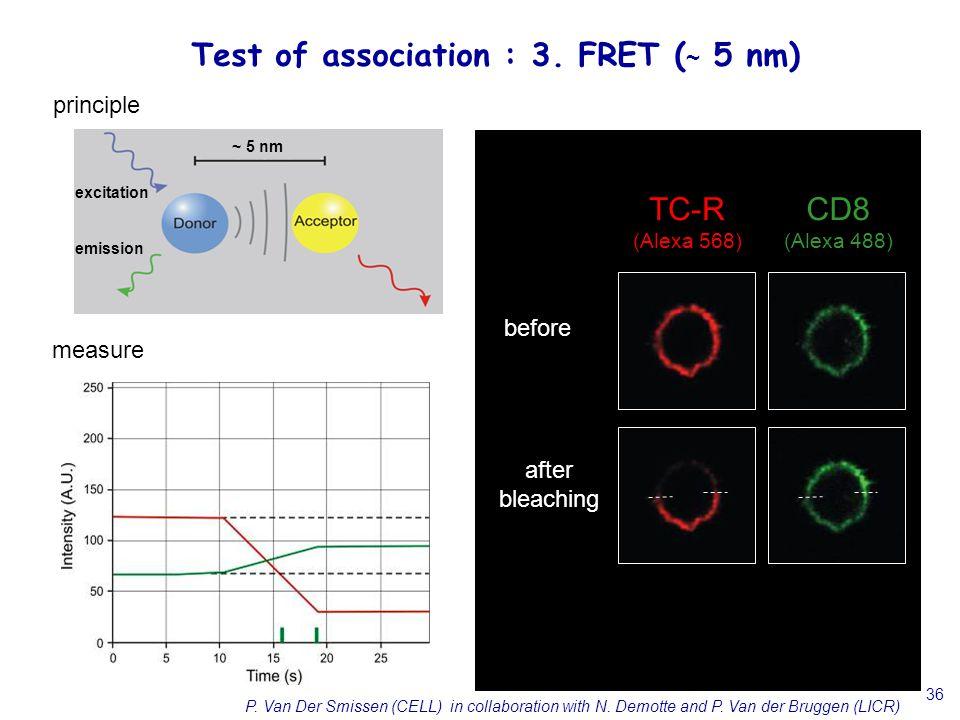 36 principle measure before after bleaching CD8 (Alexa 488) TC-R (Alexa 568) P. Van Der Smissen (CELL) in collaboration with N. Demotte and P. Van der