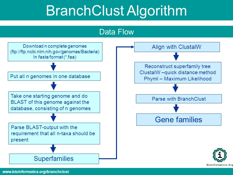 BranchClust Algorithm Data Flow www.bioinformatics.org/branchclust Download n complete genomes (ftp://ftp.ncbi.nlm.nih.gov/genomes/Bacteria) In fasta format (*.faa) Put all n genomes in one database Take one starting genome and do BLAST of this genome against the database, consisting of n genomes Parse BLAST-output with the requirement that all n-taxa should be present Superfamilies Align with ClustalW Reconstruct superfamily tree ClustalW –quick distance method Phyml – Maximum Likelihood Parse with BranchClust Gene families