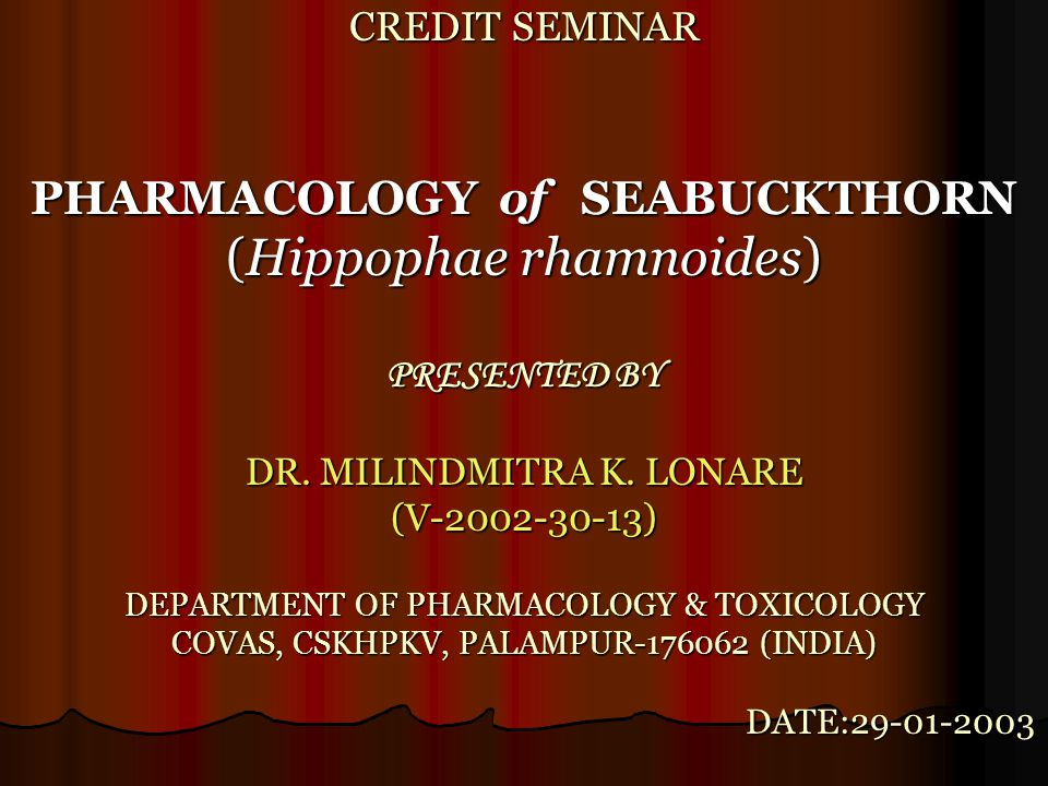 CREDIT SEMINAR PHARMACOLOGY of SEABUCKTHORN (Hippophae rhamnoides) PRESENTED BY DR. MILINDMITRA K. LONARE (V-2002-30-13) DEPARTMENT OF PHARMACOLOGY &