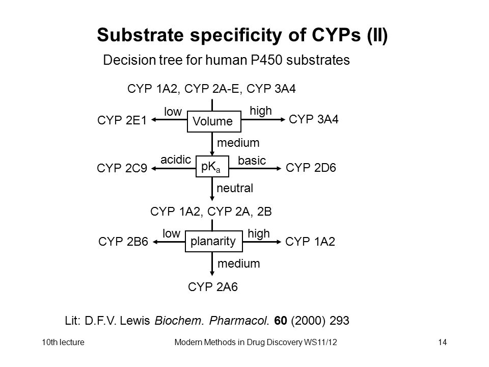 10th lectureModern Methods in Drug Discovery WS11/1214 Substrate specificity of CYPs (II) Decision tree for human P450 substrates CYP 1A2, CYP 2A-E, C