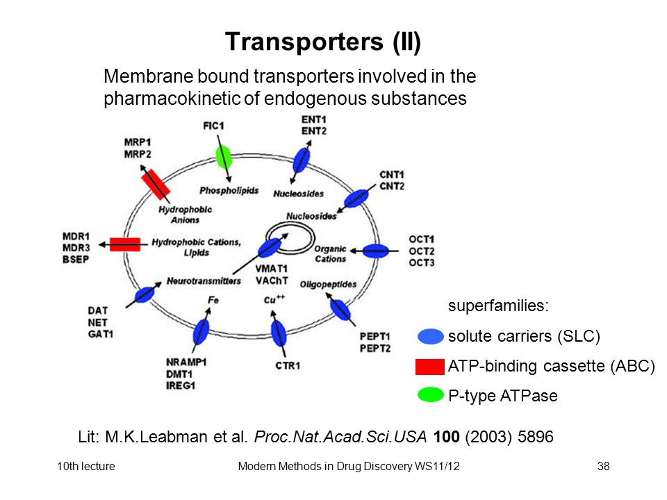 10th lectureModern Methods in Drug Discovery WS11/1238 Transporters (II) Membrane bound transporters involved in the pharmacokinetic of endogenous sub