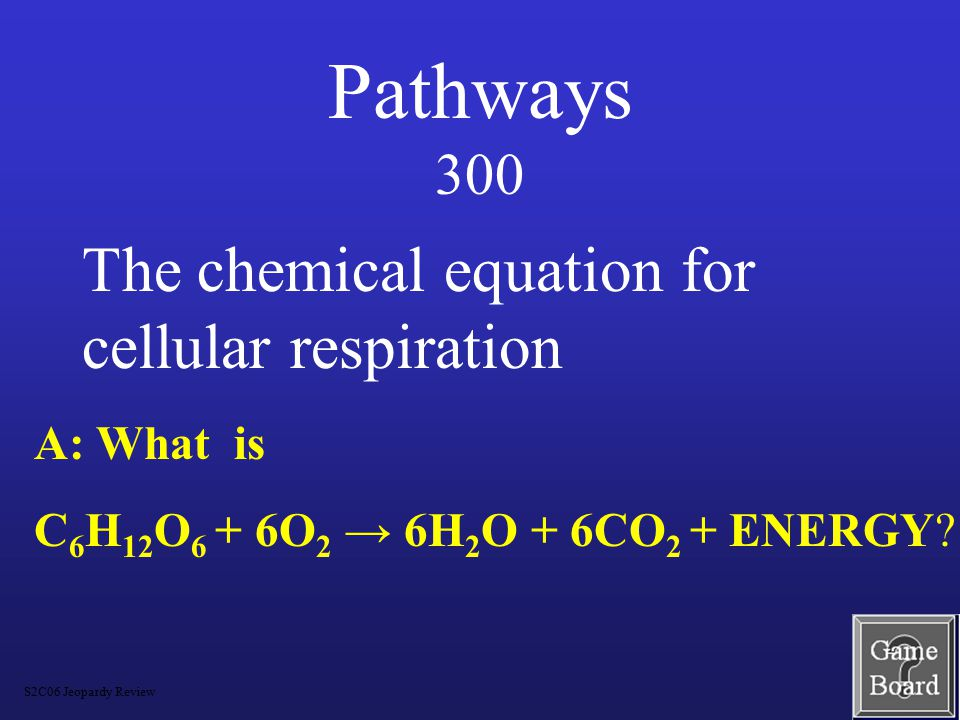 Pathways 200 A: What are glycolysis, Krebs cycle, and Electron Transport Chain .