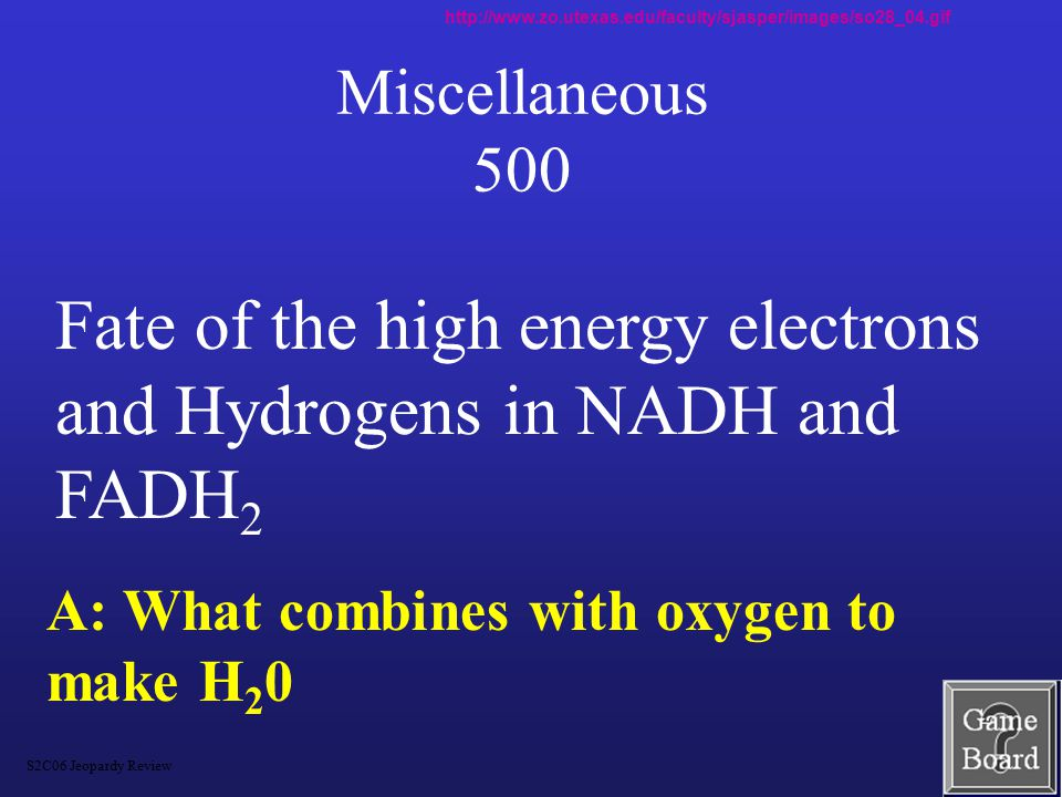 Miscellaneous 400 A: What is oxygen.