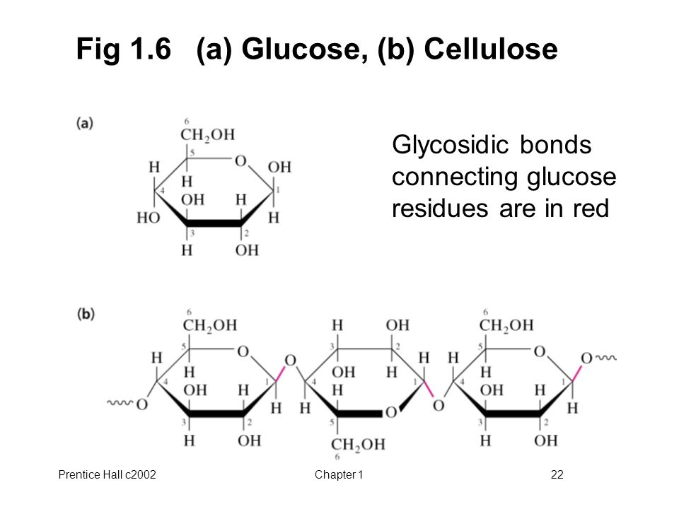 Prentice Hall c2002Chapter 122 Fig 1.6 (a) Glucose, (b) Cellulose Glycosidic bonds connecting glucose residues are in red