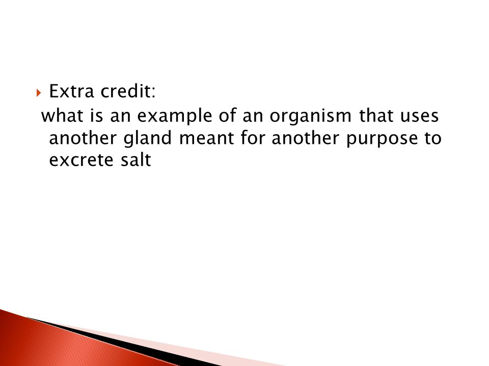  Extra credit: what is an example of an organism that uses another gland meant for another purpose to excrete salt