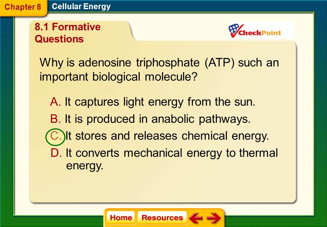 Why is cellular respiration a catabolic pathway? Cellular Energy 8.1 Formative Questions A. Energy is used to form glucose and oxygen. B. Energy is co