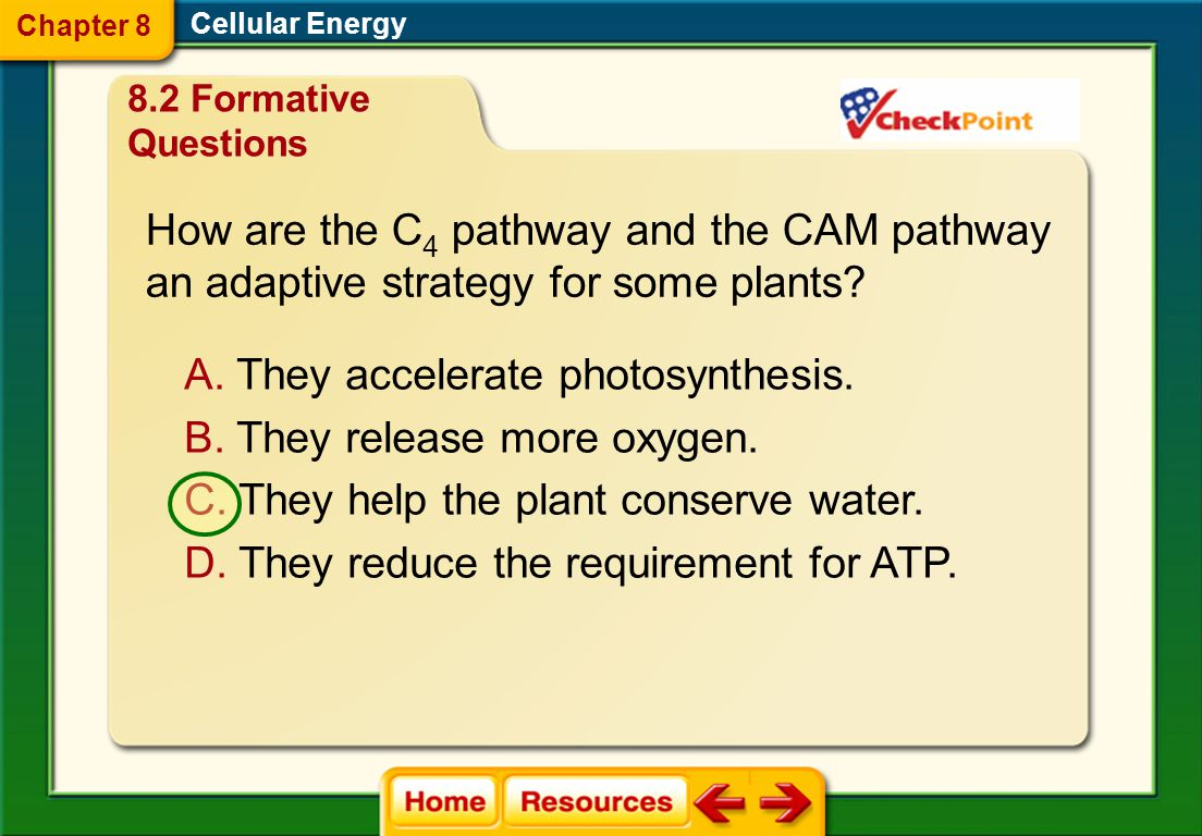 A. absorption B. chemiosmosis C. electron transport D. C 2 pathway Which mechanism of photosynthesis uses the movement of hydrogen ions (H + ) across