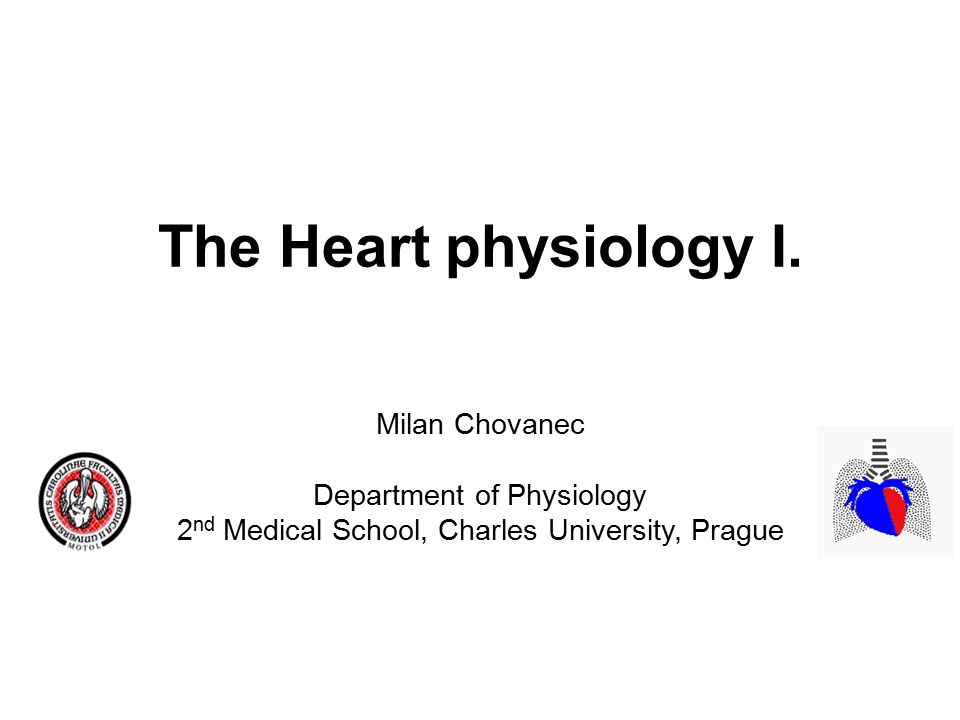 The Heart physiology I.