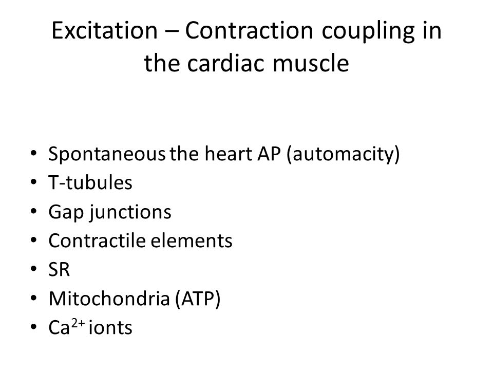 Excitation – Contraction coupling in the cardiac muscle Spontaneous the heart AP (automacity) T-tubules Gap junctions Contractile elements SR Mitochondria (ATP) Ca 2+ ionts