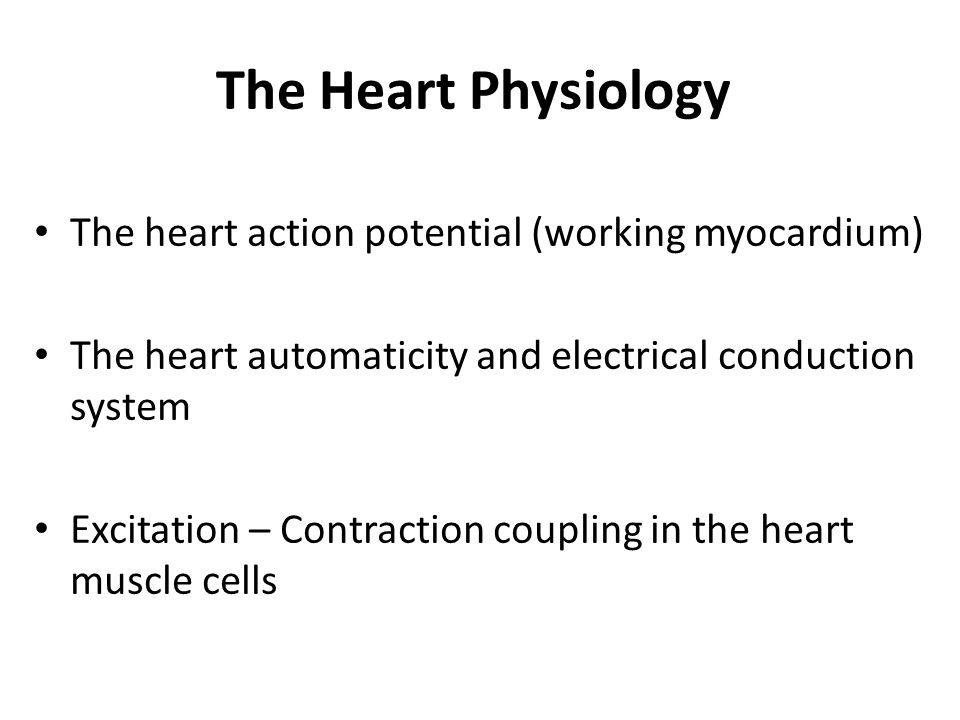 Myocardium = syncytium Gap junction = nexus