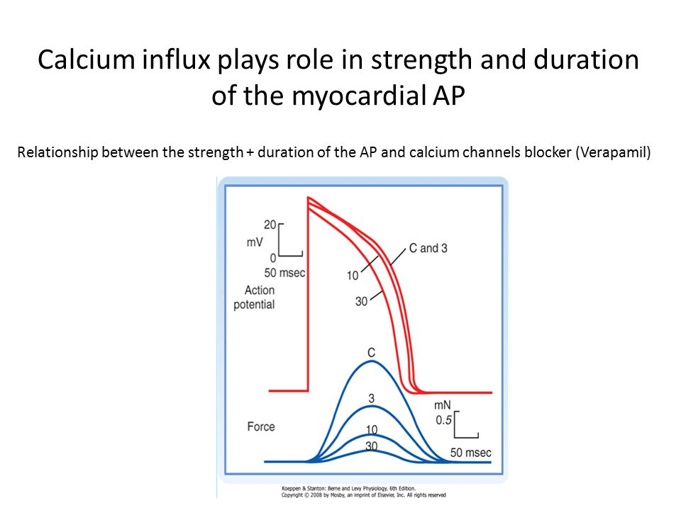 Prolonged AP prevents tetanic myocardial contraction