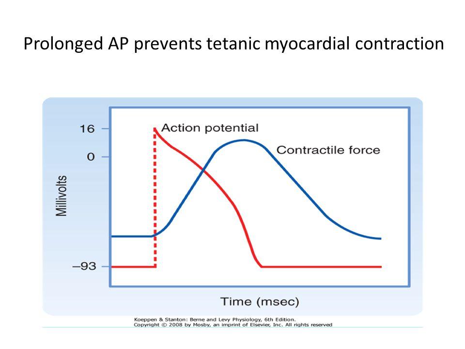Actin and myosin interaction