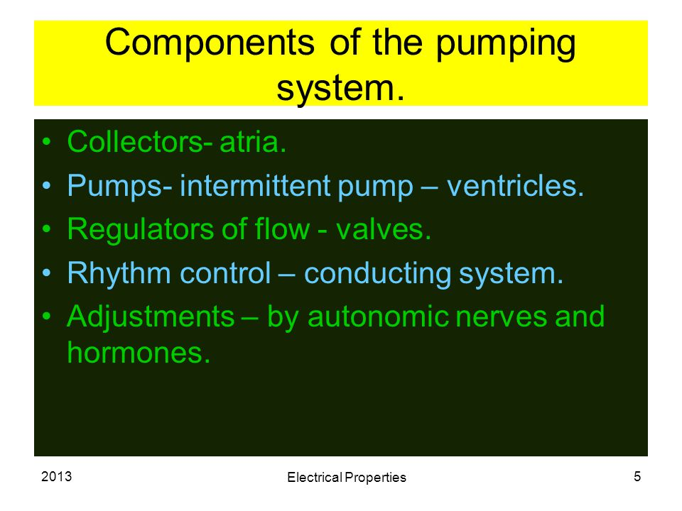 2013 Electrical Properties 5 Components of the pumping system. Collectors- atria. Pumps- intermittent pump – ventricles. Regulators of flow - valves.