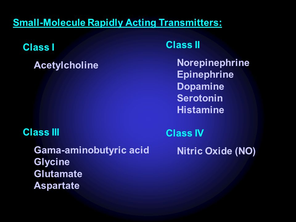 Small-Molecule Rapidly Acting Transmitters: Class I Acetylcholine Class II Norepinephrine Epinephrine Dopamine Serotonin Histamine Class III Gama-amin
