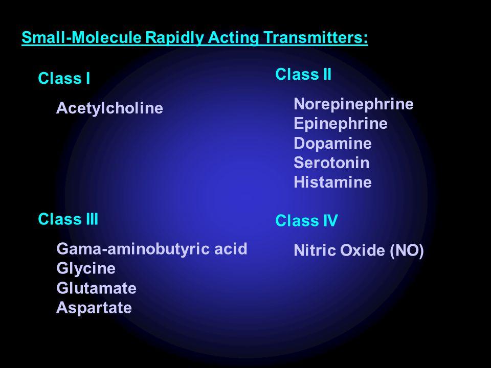 Small-Molecule Rapidly Acting Transmitters: Class I Acetylcholine Class II Norepinephrine Epinephrine Dopamine Serotonin Histamine Class III Gama-aminobutyric acid Glycine Glutamate Aspartate Class IV Nitric Oxide (NO)