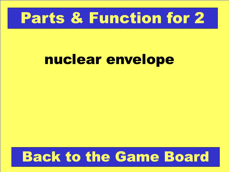 Which of the following is an example of passive transport.