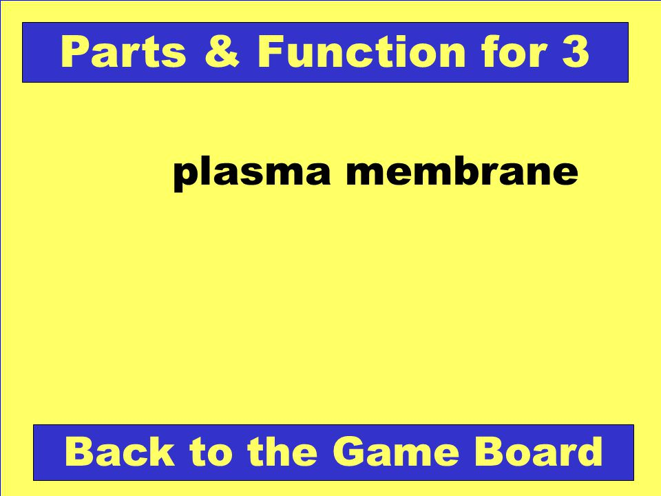 Check Your Answer Plasma Membrane for 4 What types of materials are expelled from cells during exocytosis.