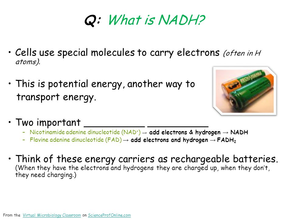 Q: What is NADH. Cells use special molecules to carry electrons (often in H atoms).