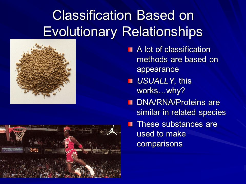 Classification Based on Evolutionary Relationships A lot of classification methods are based on appearance USUALLY, this works…why? DNA/RNA/Proteins a