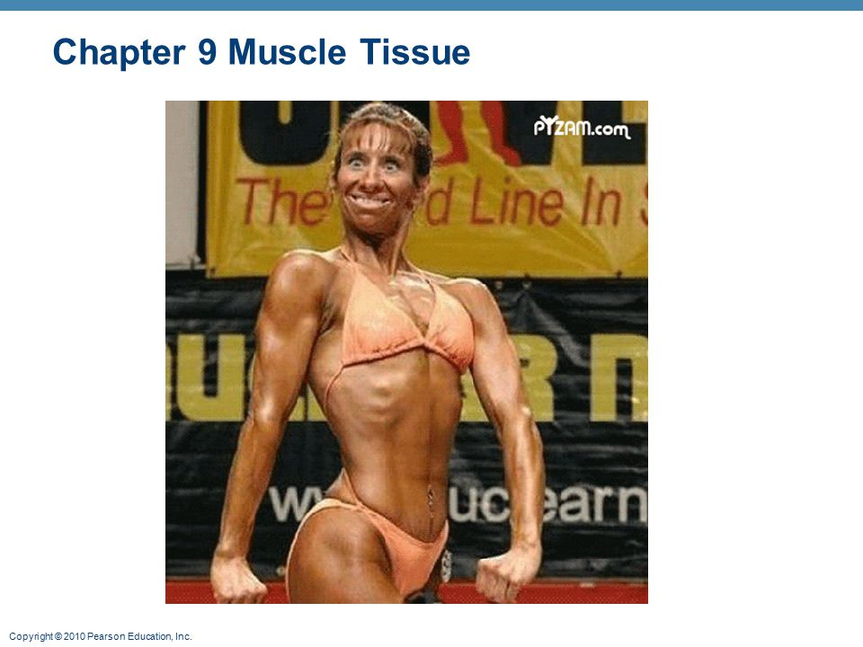 Copyright © 2010 Pearson Education, Inc. Chapter 9 Muscle Tissue