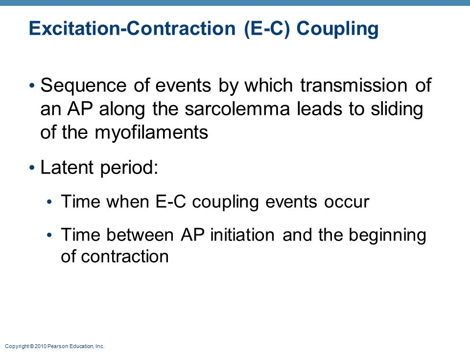 Copyright © 2010 Pearson Education, Inc. Excitation-Contraction (E-C) Coupling Sequence of events by which transmission of an AP along the sarcolemma