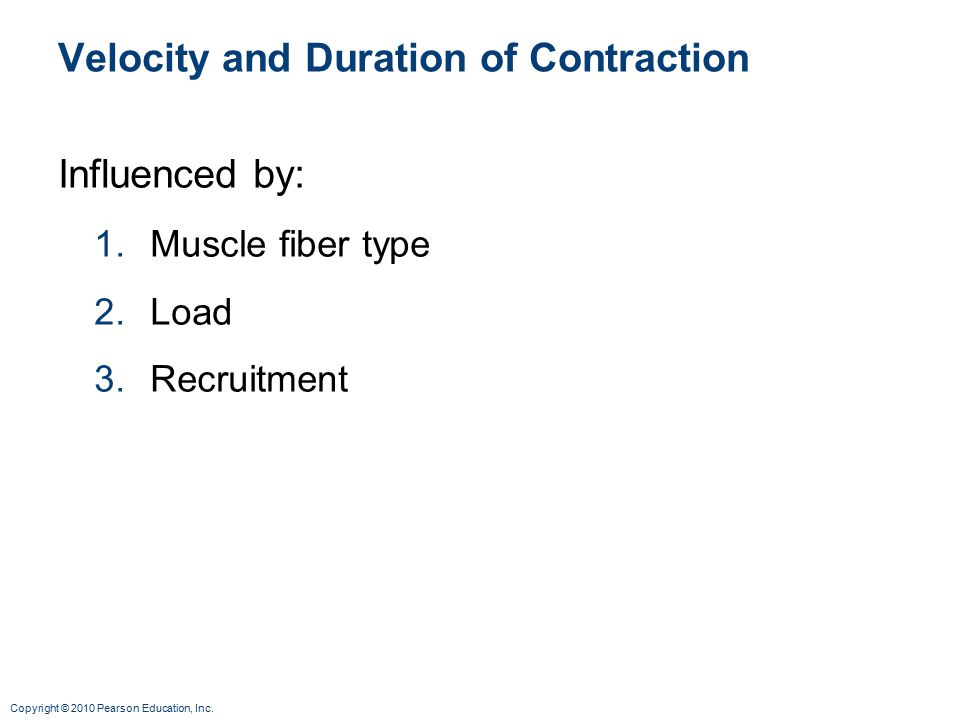 Copyright © 2010 Pearson Education, Inc. Velocity and Duration of Contraction Influenced by: 1.Muscle fiber type 2.Load 3.Recruitment