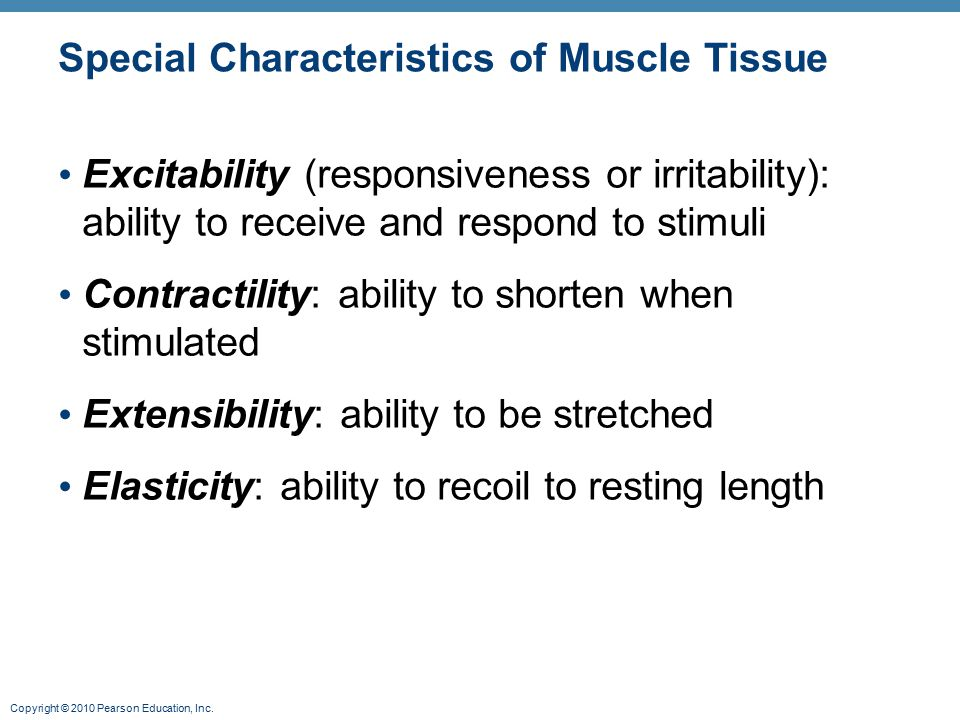 Copyright © 2010 Pearson Education, Inc. Special Characteristics of Muscle Tissue Excitability (responsiveness or irritability): ability to receive an