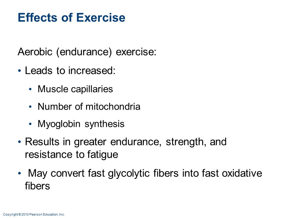 Copyright © 2010 Pearson Education, Inc. Effects of Exercise Aerobic (endurance) exercise: Leads to increased: Muscle capillaries Number of mitochondr