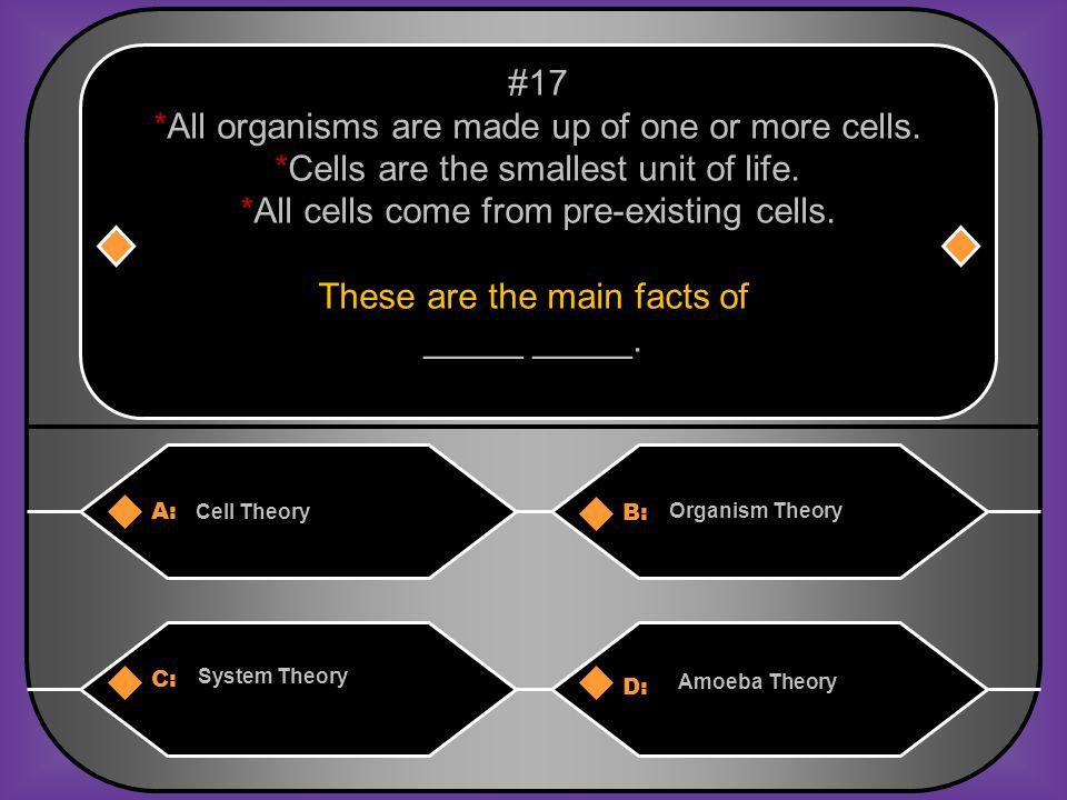 C. Cytoplasm