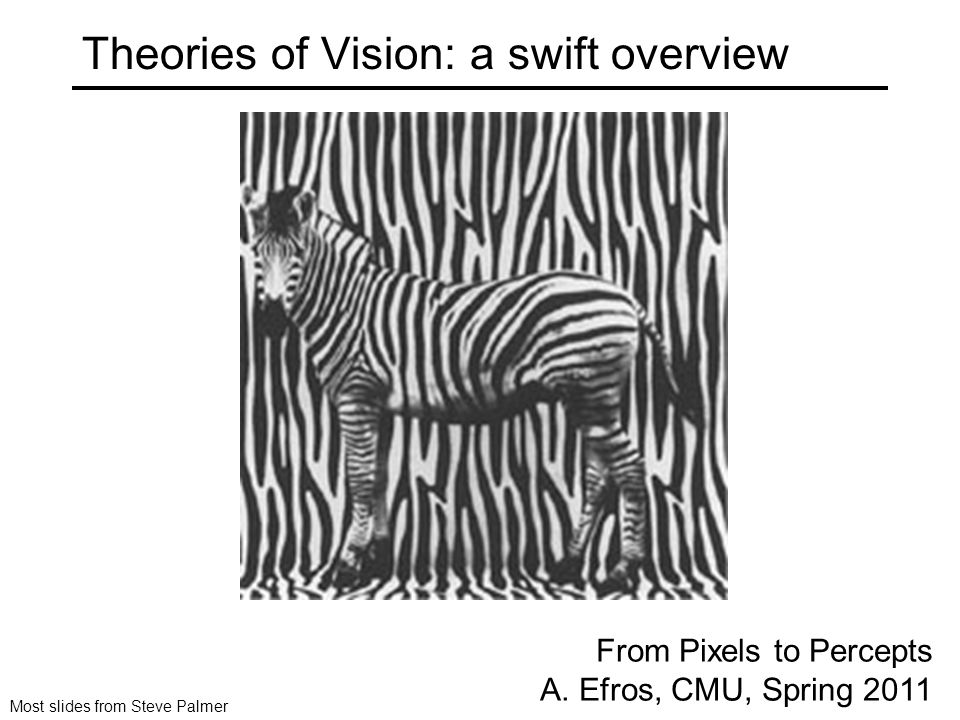 Theories of Vision: a swift overview From Pixels to Percepts A.