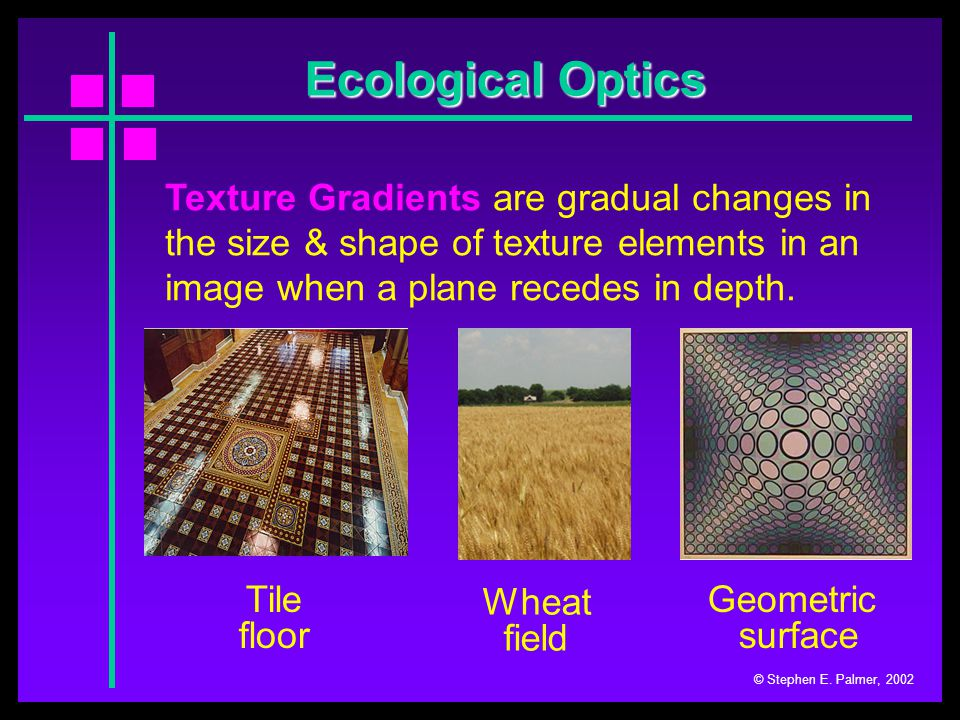 Ecological Optics © Stephen E. Palmer, 2002 Texture Gradients are gradual changes in the size & shape of texture elements in an image when a plane rec