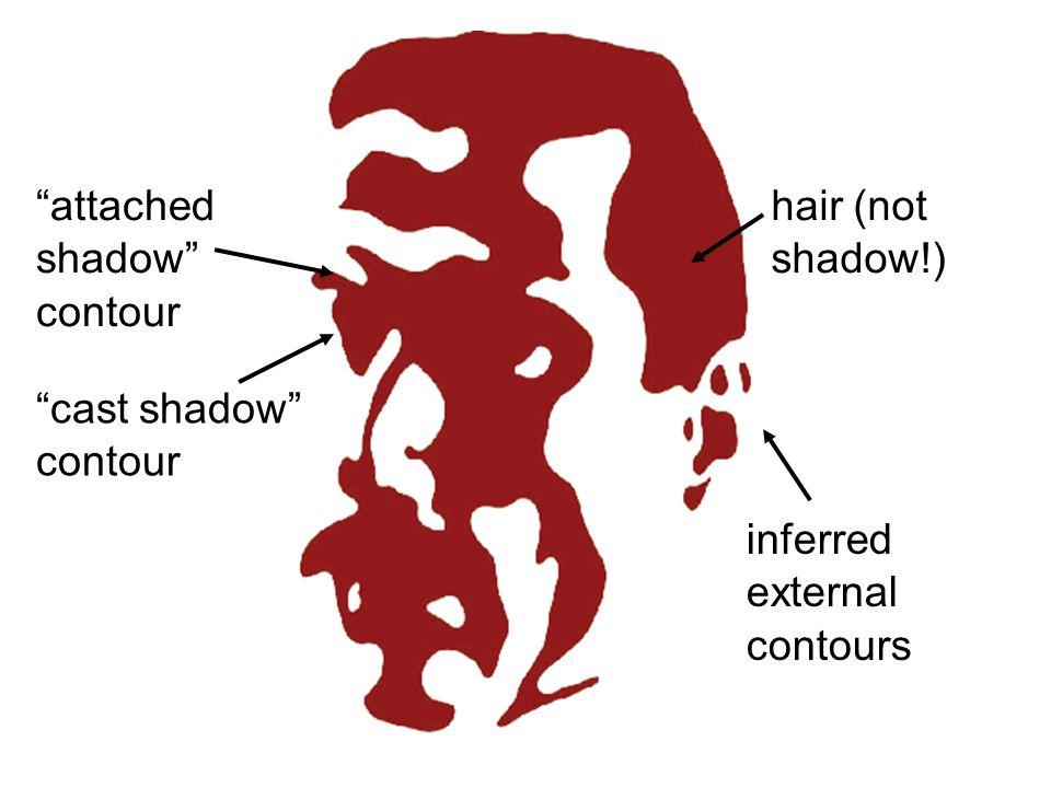 hair (not shadow!) inferred external contours attached shadow contour cast shadow contour