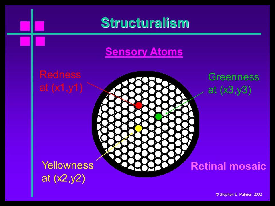 Structuralism © Stephen E. Palmer, 2002 Perceptual Complexes Retinal mosaic