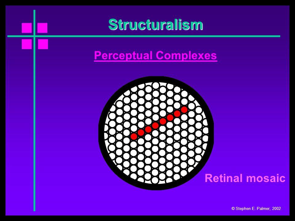 © Stephen E. Palmer, 2002 Wertheimer's laws of grouping Rows Perceptual Grouping Columns