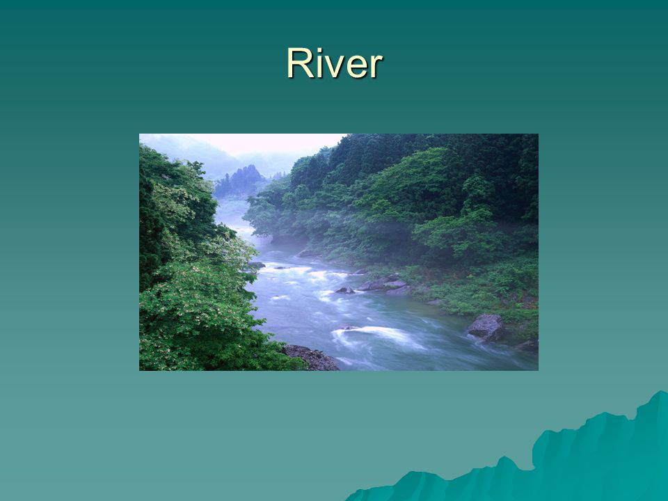 A river is a large natural stream of water.