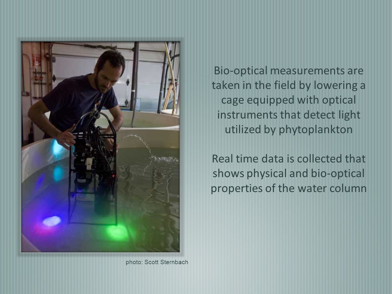Bio-optical measurements are taken in the field by lowering a cage equipped with optical instruments that detect light utilized by phytoplankton Real time data is collected that shows physical and bio-optical properties of the water column photo: Scott Sternbach