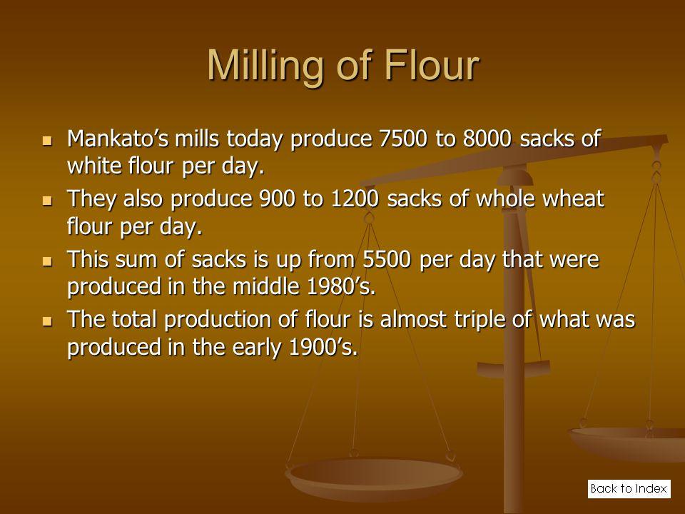 Milling of Flour Mankato's mills today produce 7500 to 8000 sacks of white flour per day.