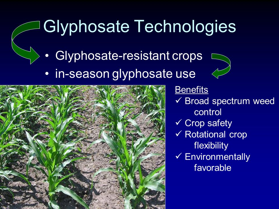 Glyphosate Technologies Glyphosate-resistant crops in-season glyphosate use Benefits Broad spectrum weed control Crop safety Rotational crop flexibility Environmentally favorable