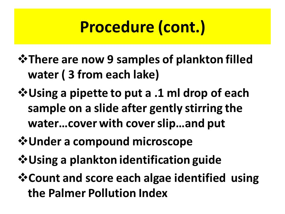 Procedure…(cont.)  Set up the plankton collection net  Pour water out of each 1 liter container …using the 3 samples collected for each lake  Establish the pH of each lake  Completing the collection process, after the water from Lake 1 is processed, (collection tube is filled with plankton) distribute the contents into 3 (100ml) beakers…top off with distilled water if needed …to reach top of beaker  Repeat process on water from Lake 2 & 3