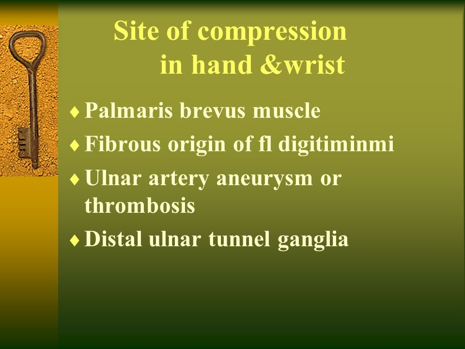 Site of compression in hand &wrist  Palmaris brevus muscle  Fibrous origin of fl digitiminmi  Ulnar artery aneurysm or thrombosis  Distal ulnar tu