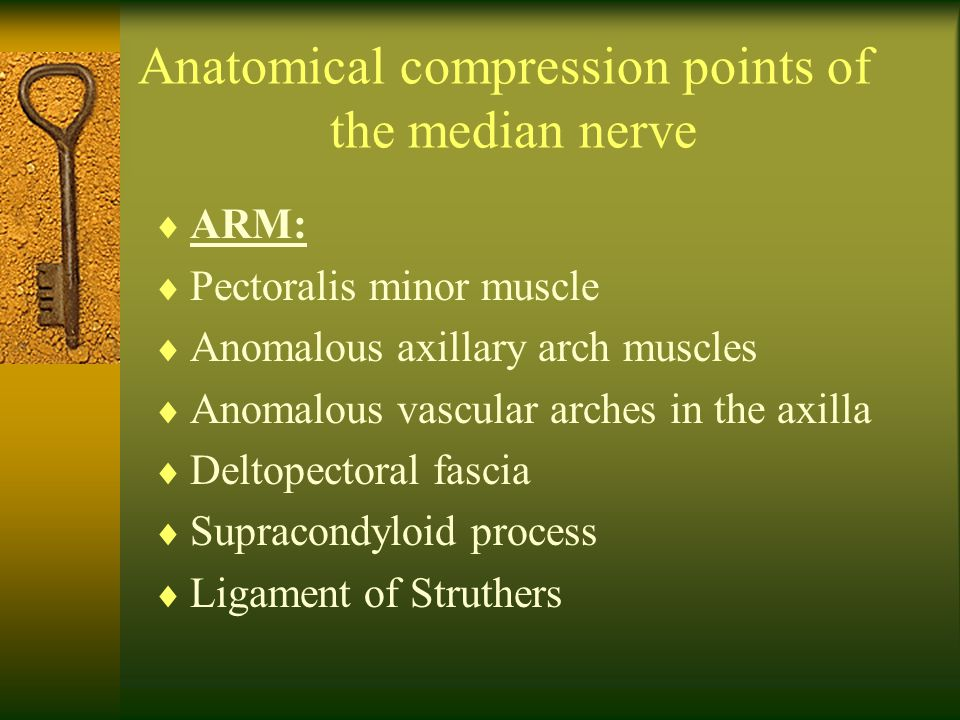 Anatomical compression points of the median nerve  ARM:  Pectoralis minor muscle  Anomalous axillary arch muscles  Anomalous vascular arches in th