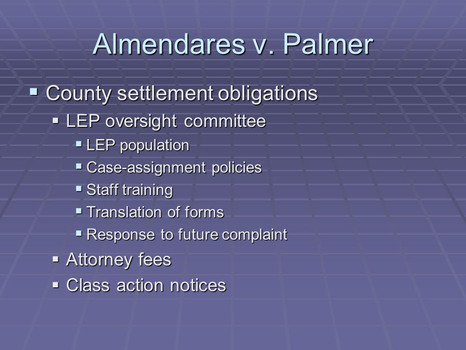 Almendares v. Palmer  County settlement obligations  LEP oversight committee  LEP population  Case-assignment policies  Staff training  Translat