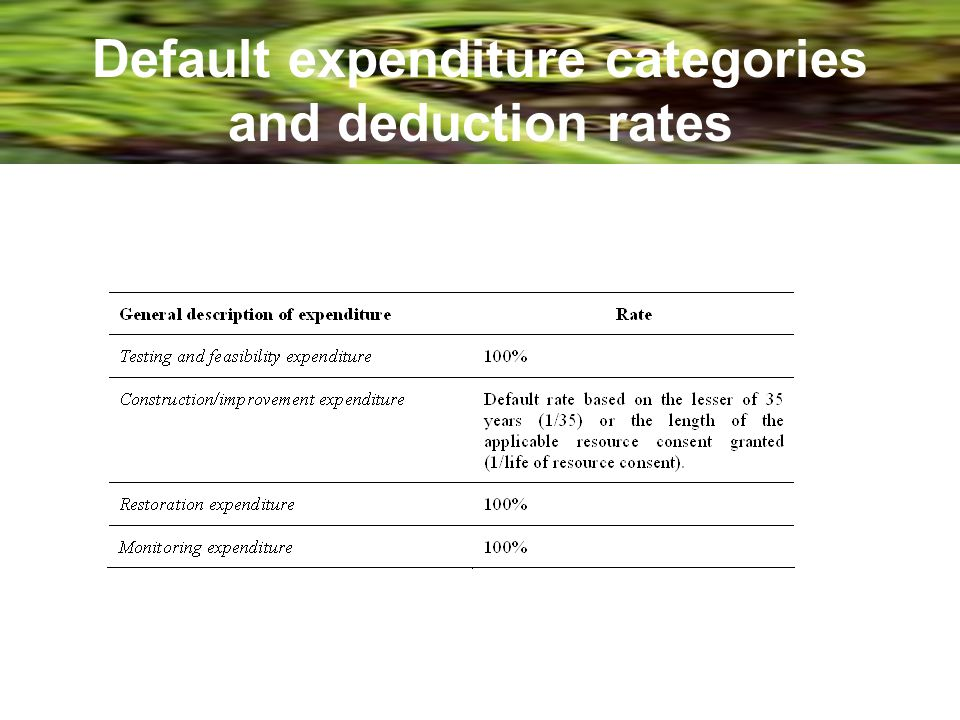 Default expenditure categories and deduction rates