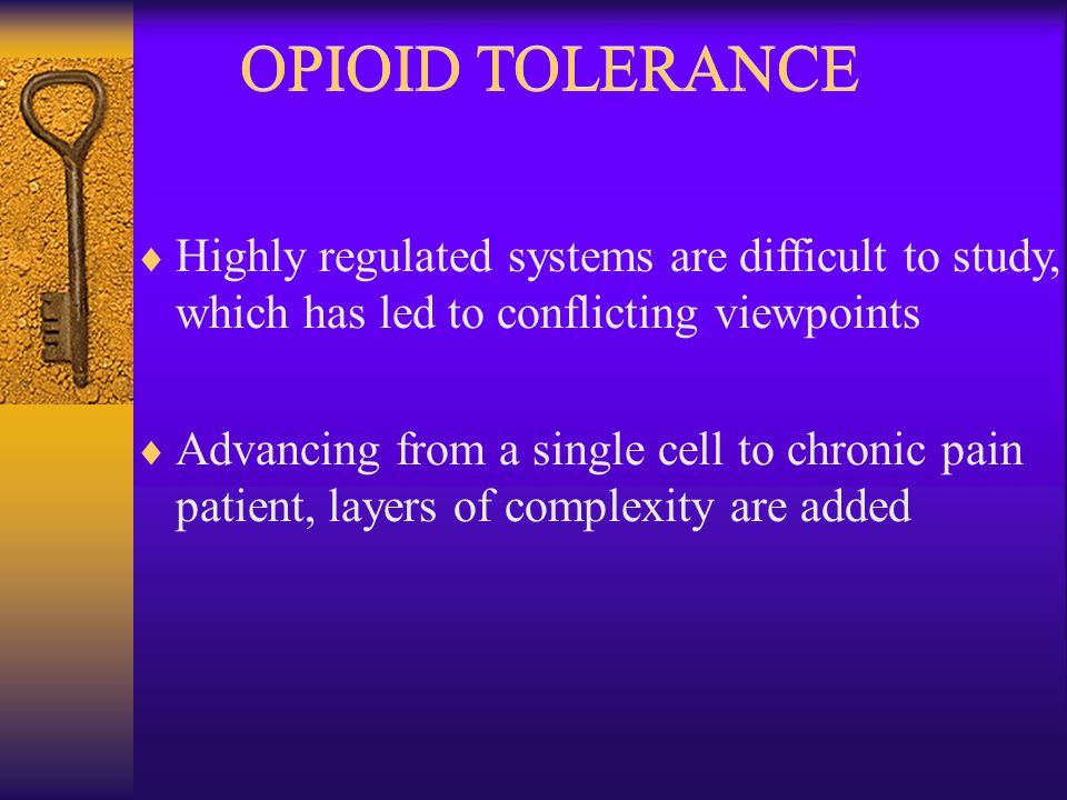OPIOID TOLERANCE  Highly regulated systems are difficult to study, which has led to conflicting viewpoints  Advancing from a single cell to chronic pain patient, layers of complexity are added