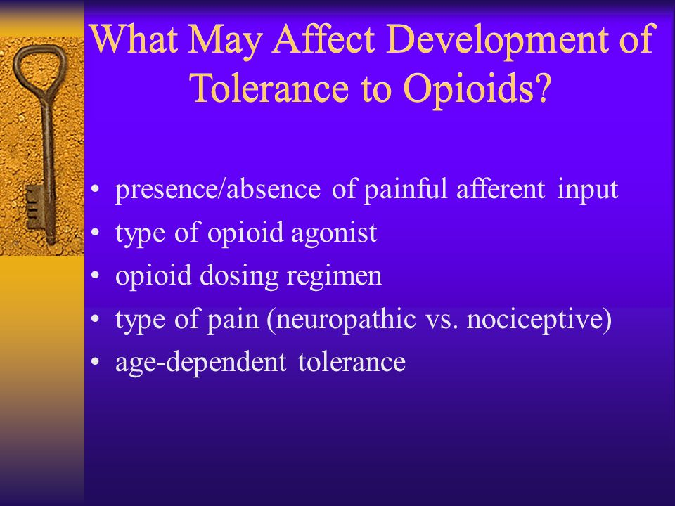What May Affect Development of Tolerance to Opioids? presence/absence of painful afferent input type of opioid agonist opioid dosing regimen type of p