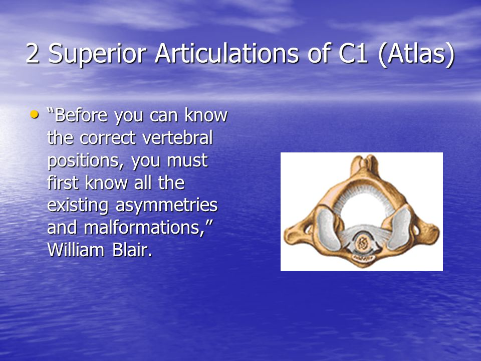 2 Superior Articulations of C1 (Atlas) Before you can know the correct vertebral positions, you must first know all the existing asymmetries and malformations, William Blair.